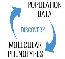 biomarker-pheotypes